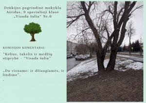 """Fotografijų konkursas """"DRAUGYSTEI NEREIKIA ŽODŽIŲ"""""""